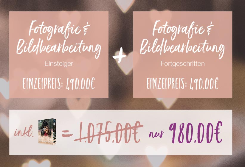 Fotografie Workshop in Kirchdorf mit Alexandra Evang Photographie
