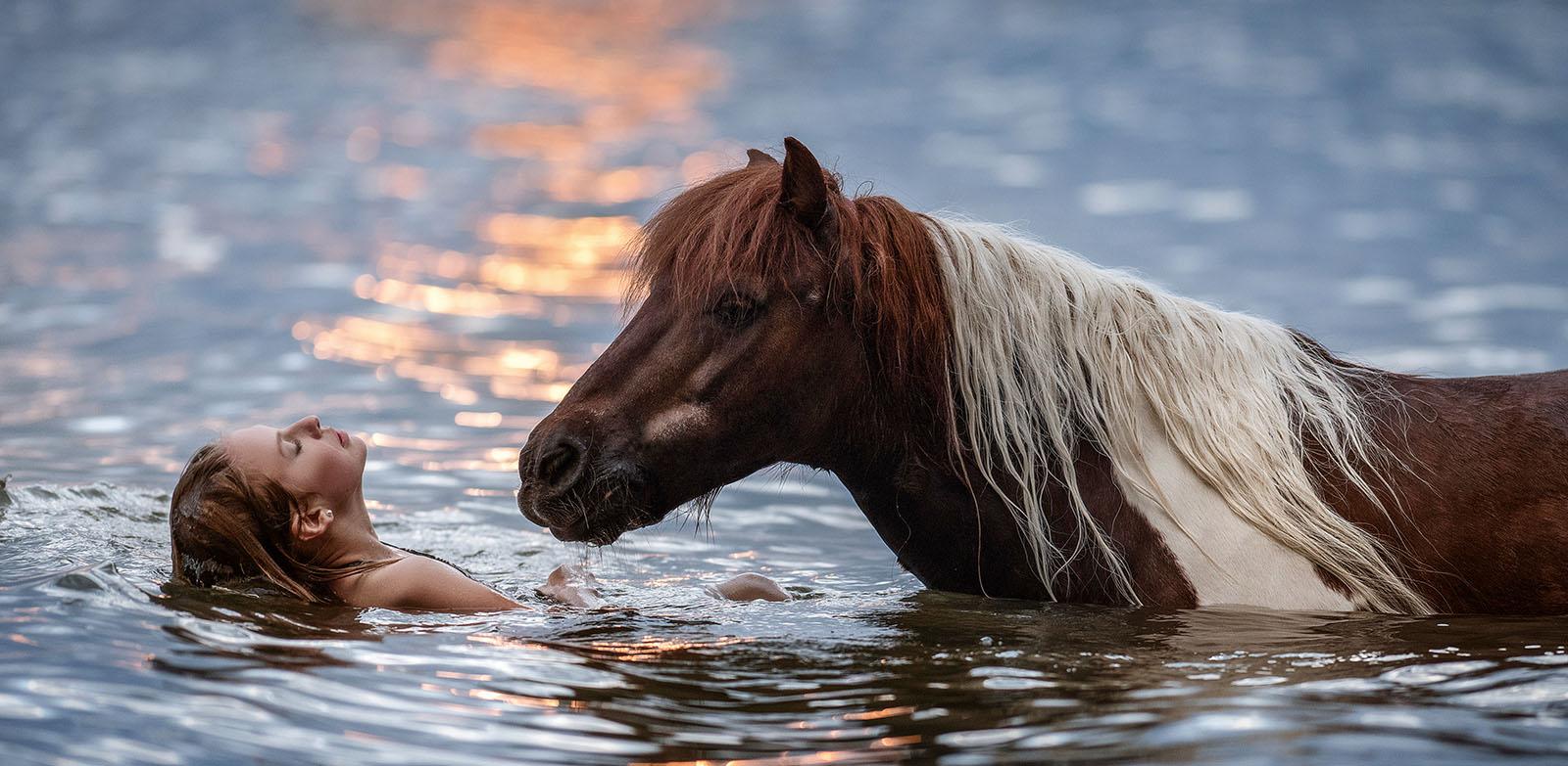 Fotoshooting mit Pferd im Wasser bei Sonnenuntergang